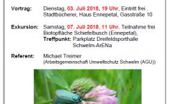 Insektensterben: Wohin gehst du, Insektenwelt?