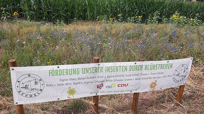 Blühwiesen in Schwelm und Umgebung